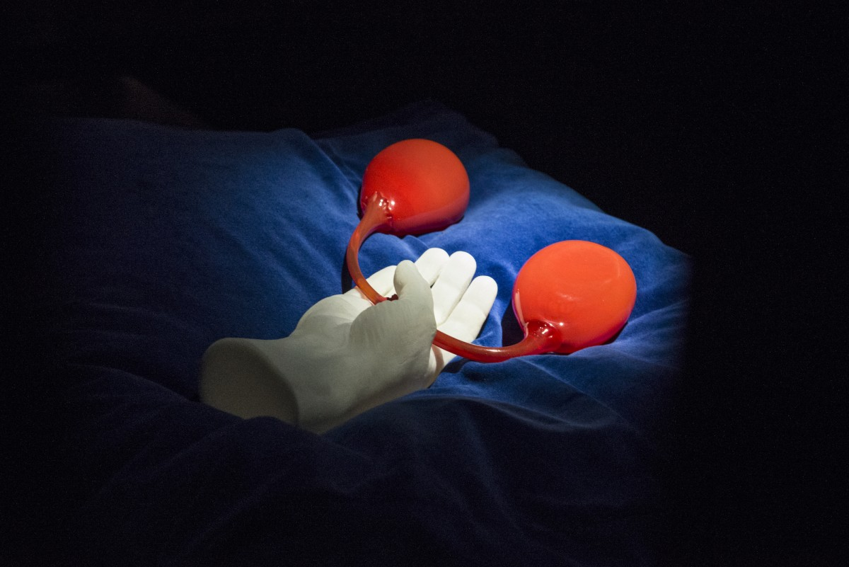 A plaster hand sits on a blue velvet cushion holding two red glass pieces in the shape of kidneys.